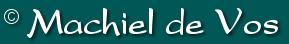 Machiel de Vos